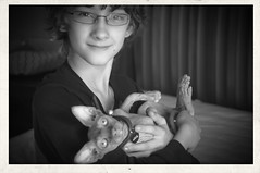 love (thedianna) Tags: blackandwhite bw cat hug buddies sphynx hairless boyandcat peterbald