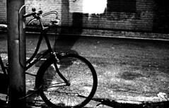 A Rainy Evening (forayinto35mm) Tags: blackandwhite london film rain bike bicycle night 35mm rainyday pentax iso400 ilfordhp5 rainy hp5 pentaxmesuper ilford twickenham