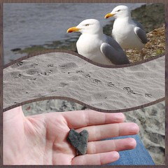 Looe ( EkkyP ) Tags: stone three sand triptych hand heart gulls footprints pebble devon gift april 365 looe beachcombing project365 365days 2013 eastlooebeach uploaded:by=flickrmobile flickriosapp:filter=nofilter