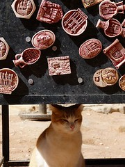 "gato souvenir • <a style=""font-size:0.8em;"" href=""http://www.flickr.com/photos/92957341@N07/8657050918/"" target=""_blank"">View on Flickr</a>"