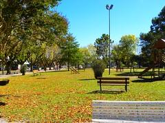 Bello Otoo (Mirilamadrid) Tags: rboles amarillo oasis bancos otoo amarillos mirilamadrid