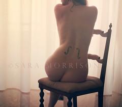 Adagietto melanconico (Sara_Morrison) Tags: light music tattoo back chair soft tattoos musica sedia classicmusic tatuaggio schiena violoncello lucesoffusa musicaclassica adagietto schienatatuaggio melanconico saramorrison cellof tatuaggiovioloncello
