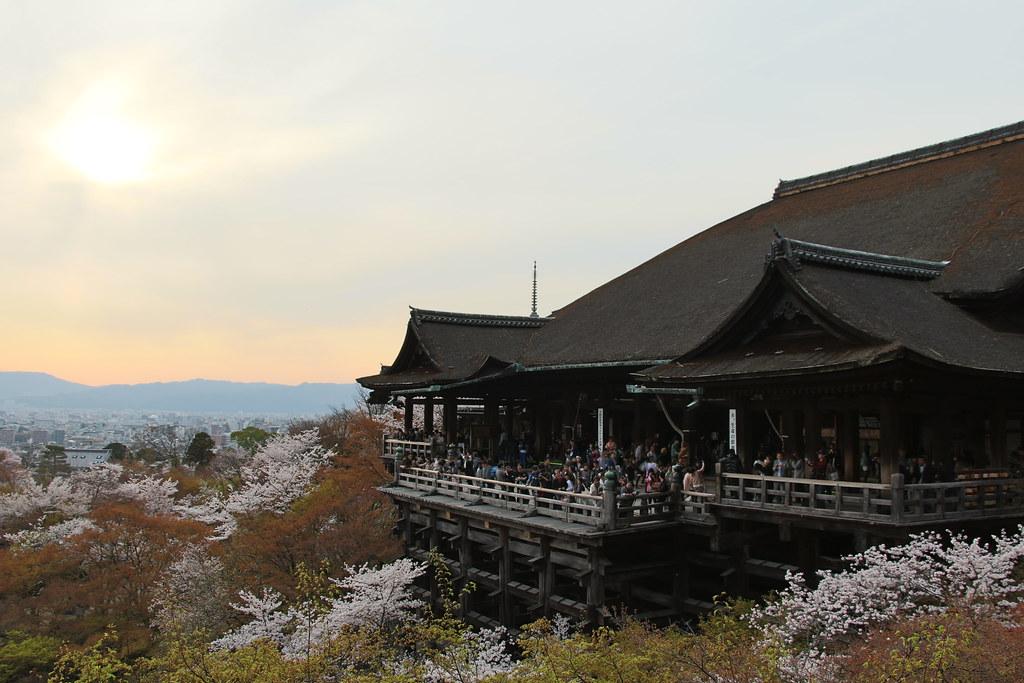 Sakura Kyoto