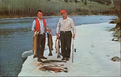 Steelhead Fishing, Chilcotin, BC (SwellMap) Tags: postcard vintage retro pc chrome 50s 60s sixties fifties roadside midcentury populuxe atomicage nostalgia americana kitsch animal animals wildlife pose posing fish fishing hunting