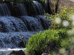 Scalinata (lincerosso) Tags: acqua water scalinata carcata falls energia gravit bellezza armonia trasparenze