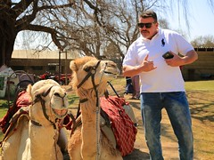 Camo and the Camels (peet-astn) Tags: camo camels southafrica farm lanseria farmersmarket