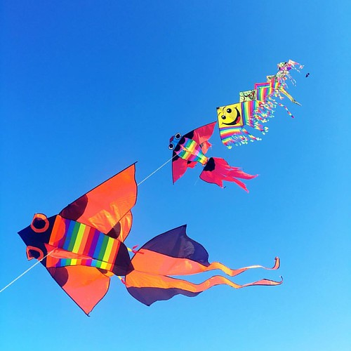 How high are these kites? #kite #letsgoflyakite #skyhigh