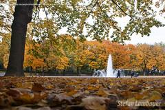 Parc du Cinquantenaire (Stefan Lambauer) Tags: cinquentenrio outono autumn jubelpark parcducinquantenaire parque lilian nature blgique belgium blgica bruxellas stefanlambauer 2015 europa brussels brasil be