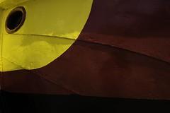 Coque perroquet (Sarah Devaux) Tags: coque texture oeil rouge jaune noir reflet peinture rénovation bassin à flots bordeaux base sousmarine lignes courbes bombé
