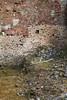_Q8B0147.jpg (sylvain.collet) Tags: france ruines ss nazis tuerie massacre destruction horreur oradour histoire guerre barbarie