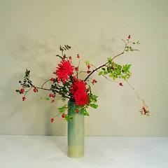 Yukino's #ikebana