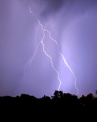 lightning strike (Hank Rogers) Tags: pa pennsylvania pittston northeast weather meteorology rain storm rainstorm thunderstorm lightning strike falling nature natural electric electricity fractal summer sky purple colors energy power discharge branch branches
