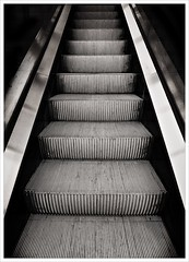 Day 237 - Going up (Free 2 Be) Tags: metal up monochrome machine project365 blackandwhite transportation technology photoaday dailyphoto 365 116photosin2016 mechanical escalator postaday stockcategories