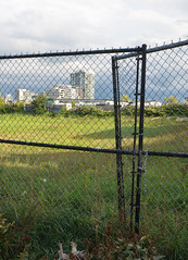 beyond the fence (mcfcrandall) Tags: fence chain locked grass green city urban space buildings toronto vacantlot empty