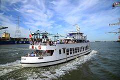 Flandria 18 DST_2192 (larry_antwerp) Tags: flandria flandria18 7646023 06105087 cmacgmamazon mpet antwerp antwerpen       port        belgium belgi          schip ship vessel        schelde