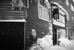 Freezing stores (threepinner) Tags: winter snow macro ice japan 50mm store hokkaido sigma boutique era   ricoh f28 hokkaidou iwamizawa northernjapan xr8     finedol
