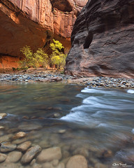 'Round the Bend ([Chris Tennant]) Tags: southwest nature water river utah glow nps canyon hike virgin cottonwood sw zion slot iconic narrows 5dmkii christennantphotography