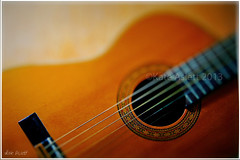 #108 Musical Instrument (Connie1105) Tags: music guitar sound strings hobbies musicalinstrument 113picturesin2013