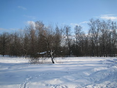 snowy scape (VERUSHKA4) Tags: park blue winter light sky cloud white snow tree nature canon way photo europe day cityscape view image russia snowy moscow sunny shade neve february scape vue astounding