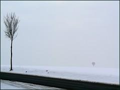 (MAGGY L) Tags: bw snow cold noiretblanc hiver ballon route neige arbre froid brouillard mongolfire pasdecalais