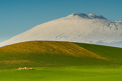 The essence of Sicily (ciccioetneo) Tags: italy panorama snow giant countryside nikon italia pano country campagna neve sicily etna contrasts gigante catania sicilia vulcano mtetna wheatfields contrasti greenfields monteetna nikkor80200mm nikkor80200mmf28 mongibello campidigrano casteldiiudica volcanoetna nikkor80200mmf28ded monsgibel nikond7000 borgofranchetto ciccioetneo essenceofsicily essenzadellasicilia