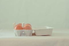 eggs in a carton (lisa_shen) Tags: soft simplicity whiteonwhite eggcarton organiceggs