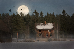 House, moon II (Totte.) Tags: moon house mist abandoned forest ghost ravens ghosthouse