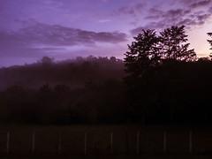 Alvorada (profcarlos) Tags: brasil dawn countryside minas gerais mg stio cypress campagne alvorada roa brsil qst cipreste