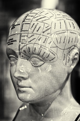 Phrenology: causality, mirthfulness, and time (coffeehistorian) Tags: ottawa phrenology on canadascienceandtechnologymuseum smcpfa43mmf19 silverefexpro2