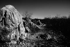 grey stones (Emiliano Grusovin) Tags: blackandwhite bw italy hiking path stones sony border confine highcontrast bn mount pietre pancake monte slovenija alpha 16mm f28 biancoenero cima gorizia novagorica percorso escursione altocontrasto sabotino cippi sooc nex3