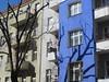 Double tree (dotpolka) Tags: blue wedding shadow tree berlin sprengelkiez