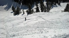 2013-03-07_09-26-33_349 (MtHoodMeadows) Tags: snow bluebird mthoodmeadows newsnow powdergallery