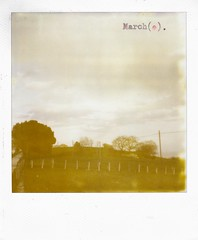 march(e). (pablowish) Tags: film typewriter analog polaroid march instant marche 600expired