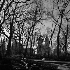 New-York_130309-26.jpg