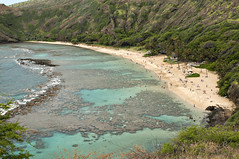 Hanauma Bay (grrlTravels) Tags: vacation beach hawaii waikiki oahu palmtrees pacificocean snorkling honolulu reef hanaumabaynaturepreserve