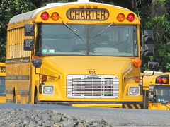 First Student #650 (ThoseGuys119) Tags: newyork bus schoolbus orangecounty charter pinebush freightliner thomasbuilt fs65 firststudentinc pinebushcentralschools