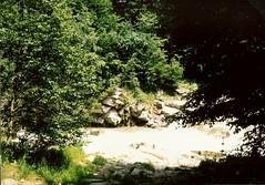 051_Prut_1992 (emzepe) Tags: white mountain rio rock stone river ukraine 1992 kirnduls fleuve ukraina prut patak  nyr oblast fehr  flus ukrayina jlius ukrajna k kavics foly hegyi krptalja jaremcze regiunea zakarpatska zakarpattia    zg  subcarpatia  szervezett krptaljai jaremcse jaremcsa jeremcse