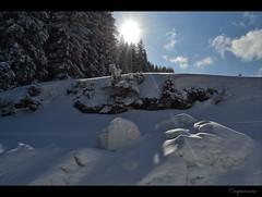 Straja ski resort, Romania (capreoara) Tags: sun mountain snow ski march nikon resort romania gondola slope hunedoara valcan straja teleski 2013 lupeni teleschi d3100