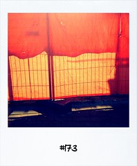 "#Dailypolaroid of 20-3-13 #173 • <a style=""font-size:0.8em;"" href=""http://www.flickr.com/photos/47939785@N05/8594868194/"" target=""_blank"">View on Flickr</a>"