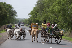 "Charrette cart ""on the road"" (geolis06) Tags: road street india rural asia route maharashtra asie farmer cart inde paysan charrette rurale"