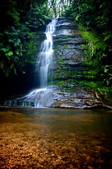 Blue Mountains (Paul D'Ambra - Australia) Tags: australia bluemountains bush bushwalking dambra lush pauldambra rainforest sydney waterfall newsouthwales nsw mountains travel forest landscape nature summer vacation photography colour lalentephotography sydneyphotographer photographer automotivephotographer portraitphotographer carphotographer