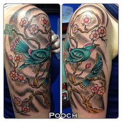 #cherryblossoms #birdtattoo   #sparrows