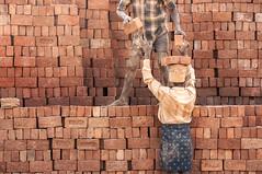 Life in Red | A brick factory workers life (dsaravanane) Tags: life light sunlight india brick workers sand redsand ground labour tamilnadu activities labours hardlife saravanan directlight brickfactory lifeinred thirumazhisai dsaravanane saravanandhandapani yesdee yesdeephotography