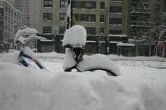 Blizzard_2006 035