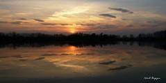 Tramonto primaverile (BORGHY52) Tags: italy primavera nature river landscape tramonto fiume piemonte po reflexions riflessi paesaggio waterscape carignano fiumepo