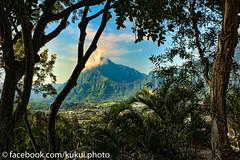 Pali Lookout and Ko'olau from Pu'u Ali'i #Hawaii #Photography (Kukui Photography) Tags: hawaii oahu lookout kaneohe pali puu palilookout alii puualii