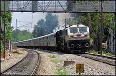 Banking beauty 40046 !! (sany20005) Tags: india transportation gradient curve signal banking railroads indianrailways canonphotography railtransport bangalorecity canonindia canonsx30is ublwdp4b siddagangaintercity wdp4bphotos wdp4bphoto