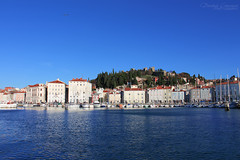 Blues of Piran ((DC) DorotejaC) Tags: city houses red sea sky white green bird castle beach water architecture canon landscape photography eos flying ruins view seagull hill blues slovenia piran seaport waterscape istra slovenian 650d dorotejac