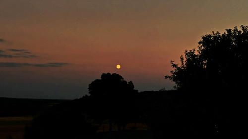 Pappenheim rising moon