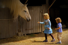 Making Friends (joegeraci364) Tags: altered animal art artistic barn child curious cute domestic farm girl horse image photo photograph print stable youth boy topazlabs impression friends friendship innocence memories